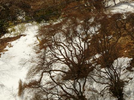 筑波山 展望台からの眺め 5