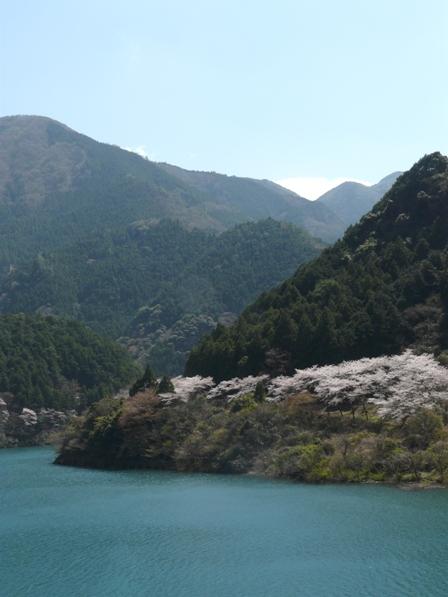 大渡ダム周辺 1