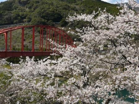 大渡ダム周辺 4