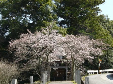吉井神社 1