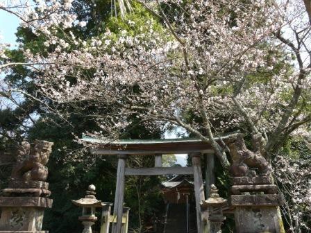 吉井神社 2
