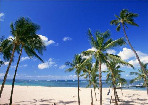 ハワイでも雪が降る所があるって本当?