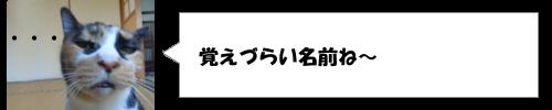 きゃりーぱみゅぱみゅが高校時代の卒業アルバムの写真を公開