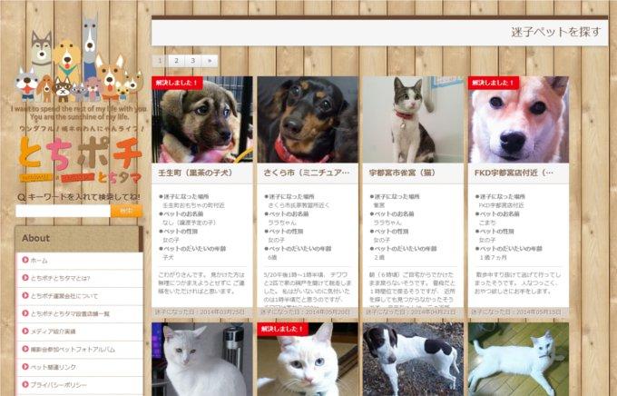 迷い犬猫掲示板開設。殺処分回避に貢献(栃木)