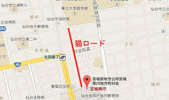 700メートルに渡る「猫ロード」が誕生、22日に「ねこまつり」開催(宮城)