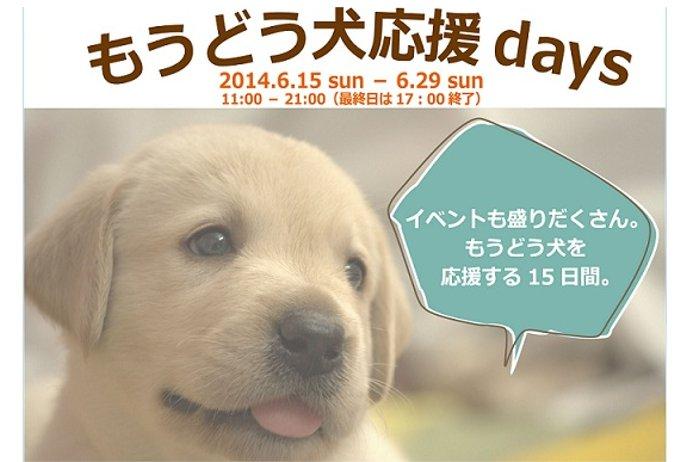盲導犬応援イベント「もうどう犬応援days」を15日から開催(銀座)