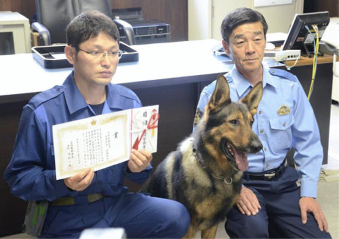警察犬のダイゴがお手柄!行方不明の男児を発見(山梨)