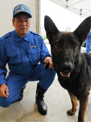 新米の警察犬ドリルがお手柄(鹿児島)