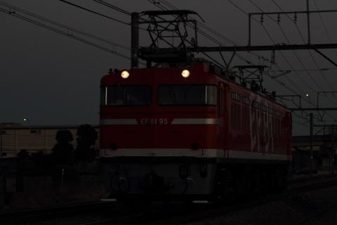 IMG_2948_n.jpg