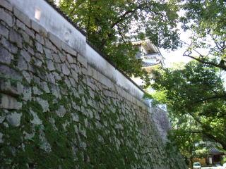 小納戸櫓下石垣