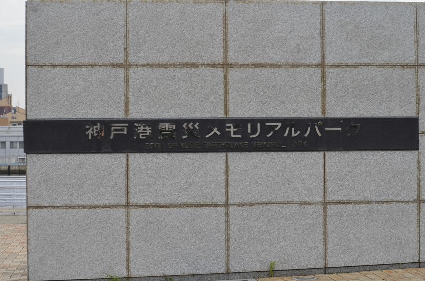 057_6513.jpg