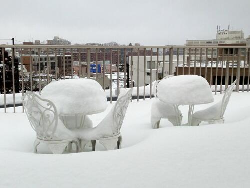 140215 大雪 1