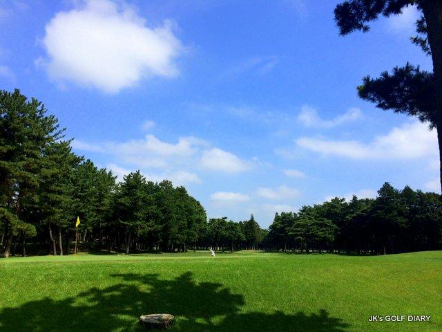 narashino2014_8 (2)-001