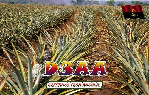 s-D3AA_pineapple表