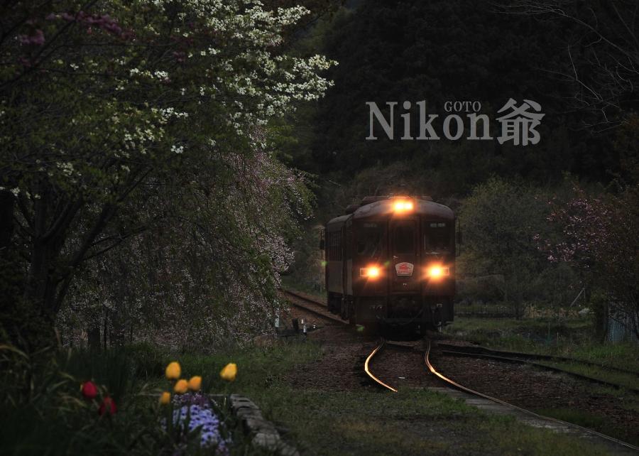 2014 04 19 ゎ鉄 D3x (12)J@S