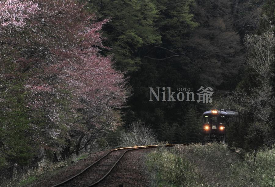 2014 04 19 ゎ鉄 D3x (21)J@S