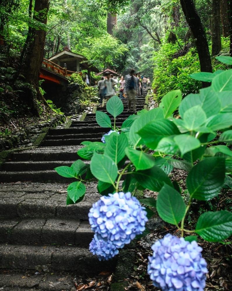 2014 06 22 太平山 しっとりの階段R@S