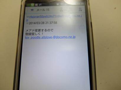 DSCF0423.jpg