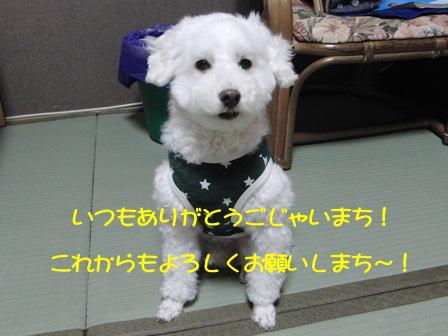 b1597.jpg