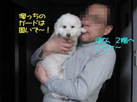 b993.jpg