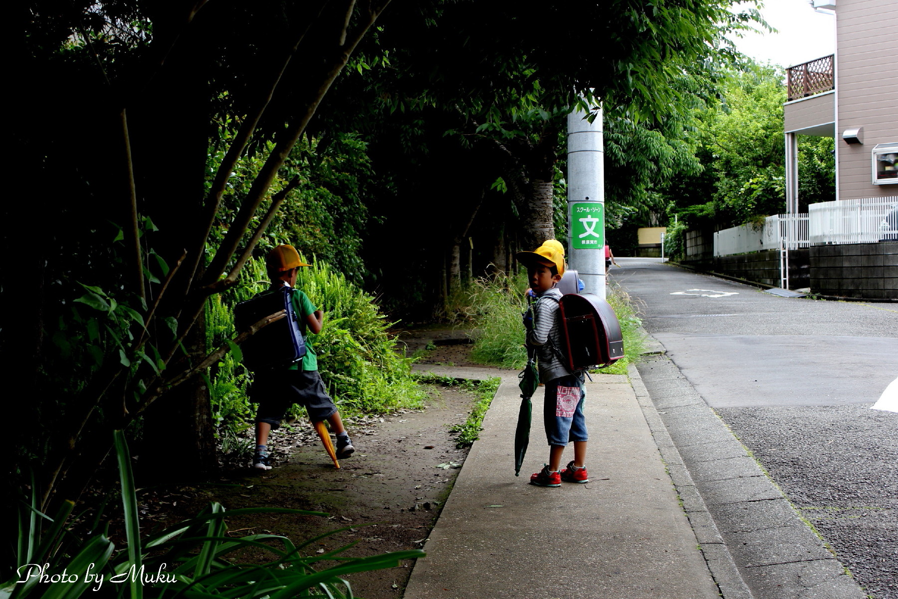 2014/06/12 雨上がり (散歩道:神奈川県横須賀市)