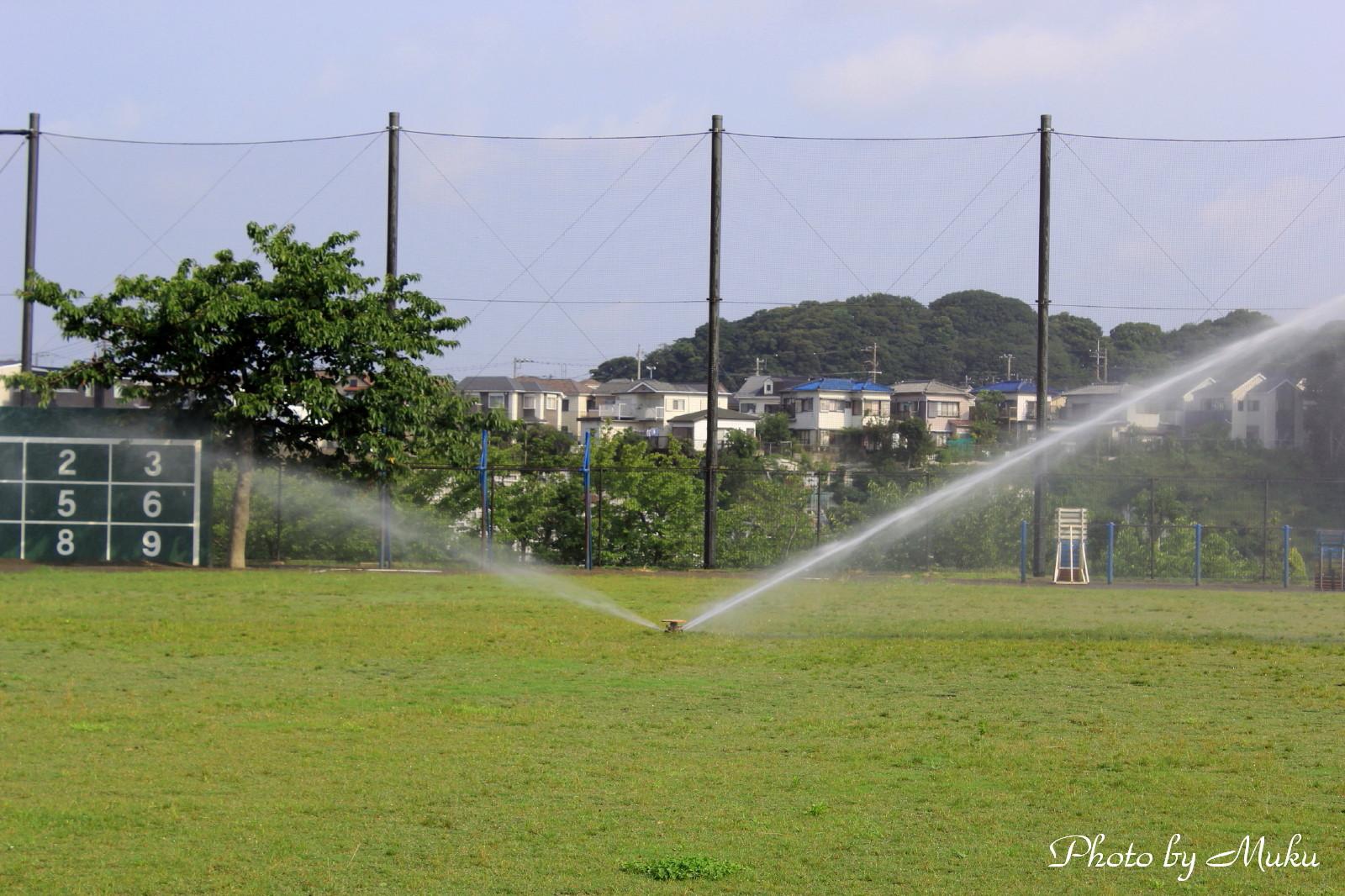 20132014/07/22 校庭(散歩道:神奈川県横須賀市)