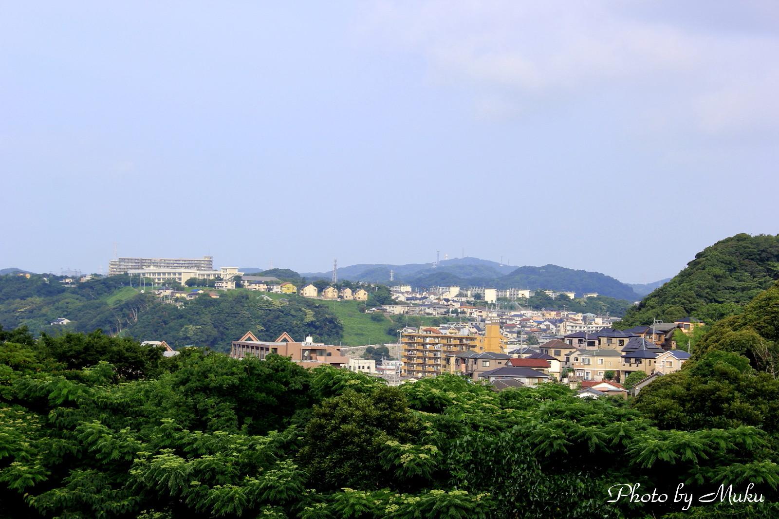 20132014/07/21 湘南山手(散歩道;神奈川県横須賀市)