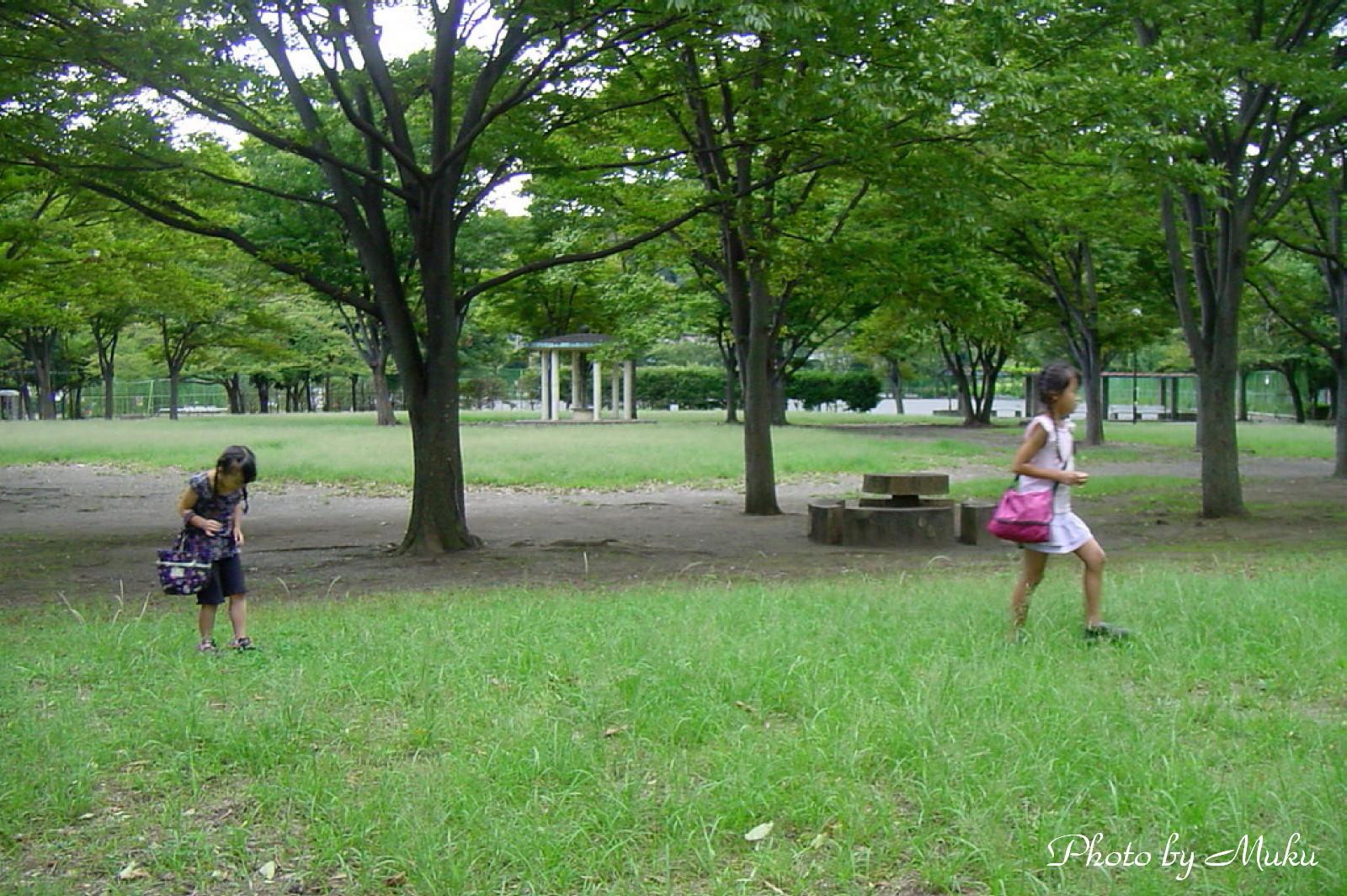 2012.9.29 何を見つけたのかな (神明公園:神奈川県横須賀市)
