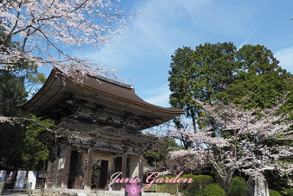 14三井寺