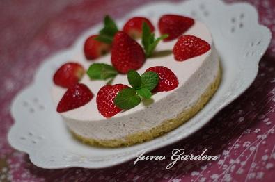 イチゴババロアケーキケーキ