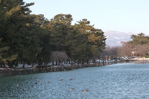 敷島公園②
