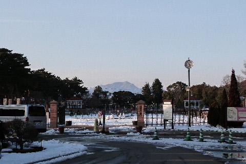 敷島公園ばら園入口