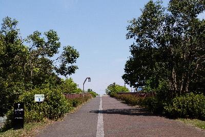 さきたま緑道橋⑤-歩道橋-