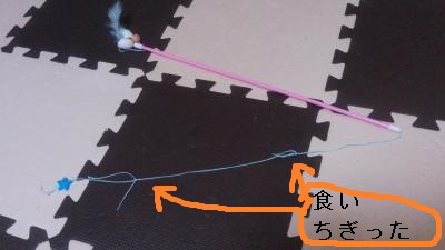 20140720-3.jpg