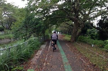 緑のヘルシーロード