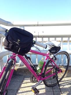彩湖の橋の上