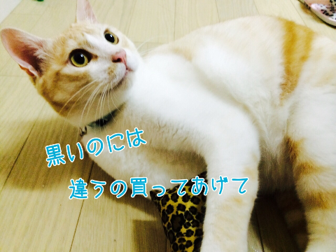 201407262112054ae.jpg