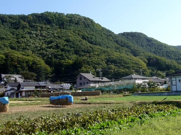 田口城01