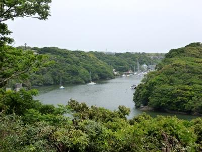 新井城09