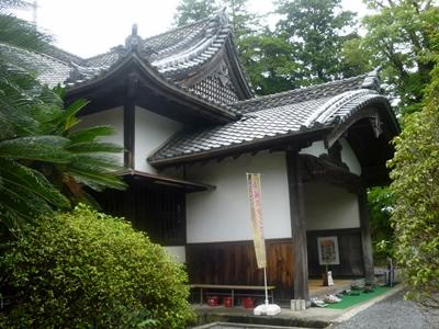 掛川城10