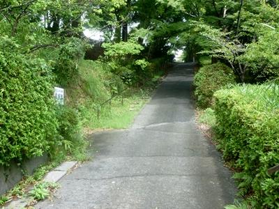 掛川城17