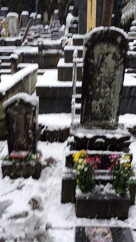 墓参り 2014 春彼岸20140321_060554