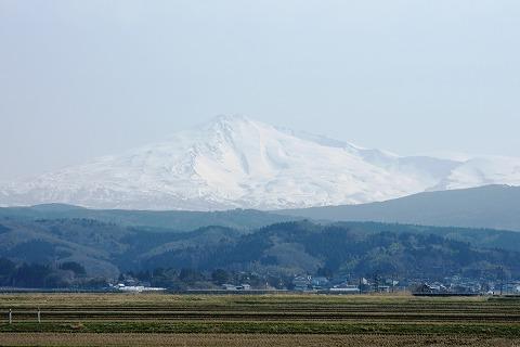 鳥海山03613