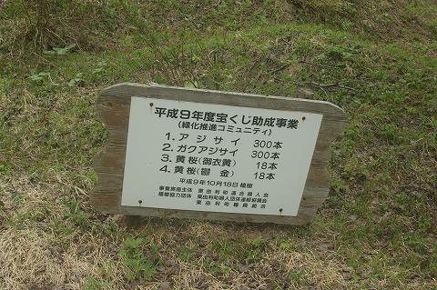 やしおダムDSC04438