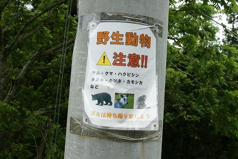 銀山温泉DSC03665