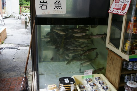 関山DSC03670