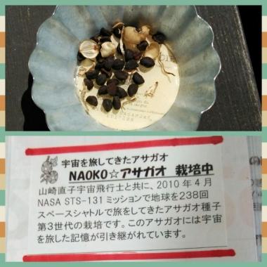 2014-05-14_14.jpg