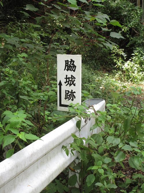 西条城・川島城・脇城・大西城 011