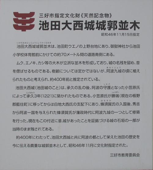 西条城・川島城・脇城・大西城 013