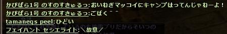 まっこいきゃんぷ